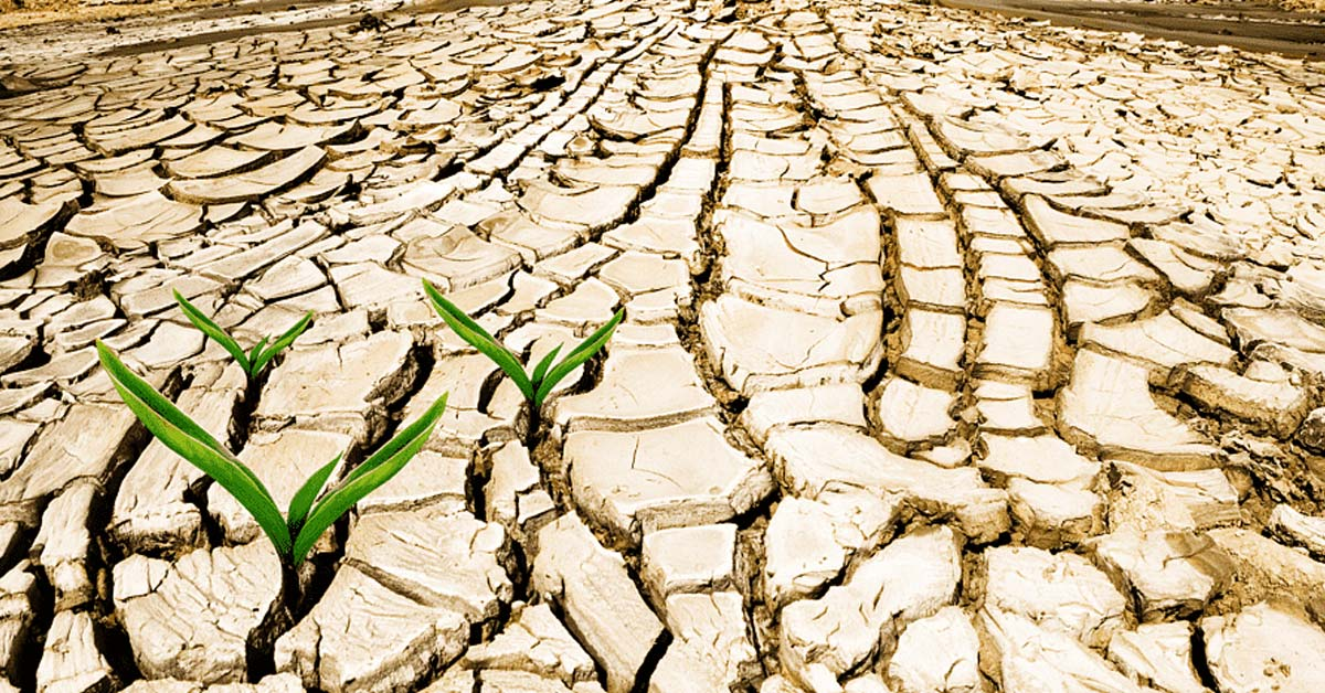 Best time for planting crops in Drylands of Indonesia